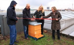Bienenstandort In den Ministergärten feierlich eingeweiht